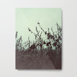 | Ode to January | Metal Print