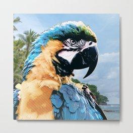 Tropical Macaw Parrot Metal Print