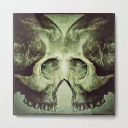 Skull to Skull Metal Print