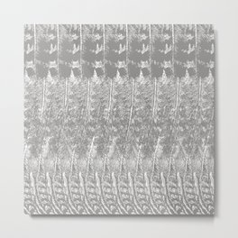 Feather Pattern | Grey and White Metal Print