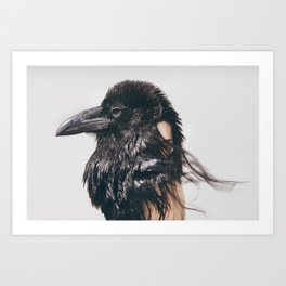Crows by Omerika Art Print
