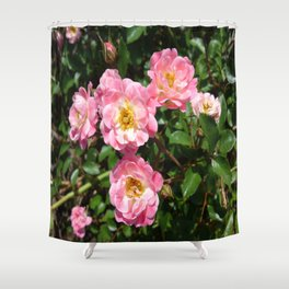 White and Pink Rose Shower Curtain