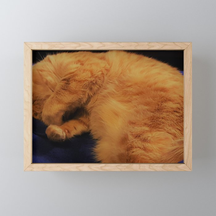 Aren't I cute! Framed Mini Art Print