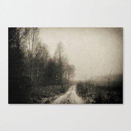 Snowfalls Gone By Canvas Print