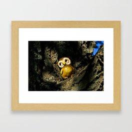 Harvey the Owl I Framed Art Print