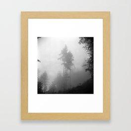 Nr3 Framed Art Print
