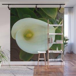 Overhead Shot Of A Heart Shaped Cream Calla Lily Wall Mural