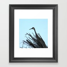 Crane Hiding Framed Art Print