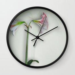 Shadowed Amaryllis Wall Clock