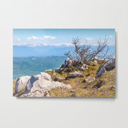 Top mountain scenics view on Alps chain in summer Metal Print