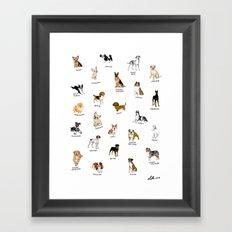 Dog breeds! Framed Art Print