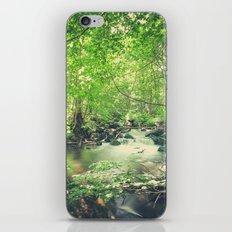 Peekaboo 4 iPhone & iPod Skin