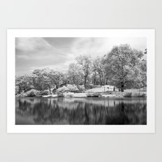 Central Park in Infrared Art Print