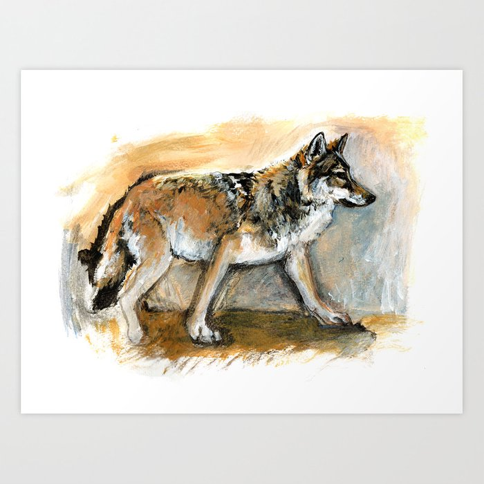 Chinese Tibetan Wolf Art Print