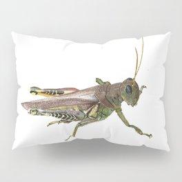 Grasshopper Pillow Sham