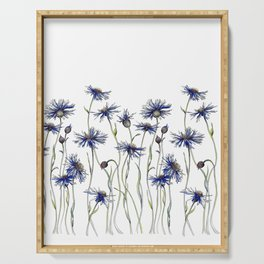 Blue Cornflowers, Illustration Serving Tray