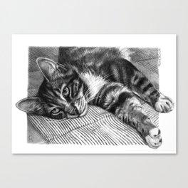 Resting Kitty G064 Canvas Print