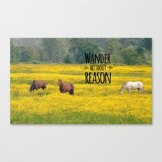 Wander Without Reason Canvas Print