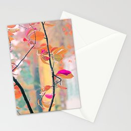 New Autumn Colours  Stationery Cards