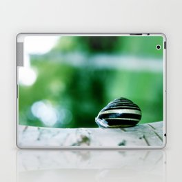 Snail on Silver Birch Laptop & iPad Skin