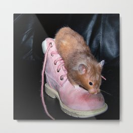 The Old Hamster in the Shoe Metal Print