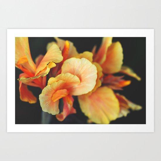 Like Velvet Art Print