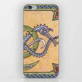 Celtic Infinity Dragons iPhone Skin