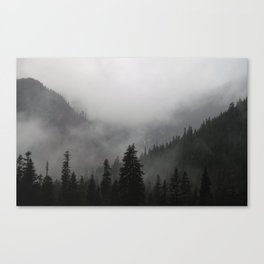 I Love This Place Canvas Print