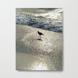 sand piper Metal Print