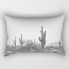 DESERT X / Scottsdale, Arizona Rectangular Pillow