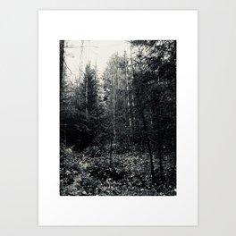 Høst Art Print