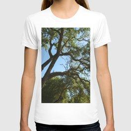 Upward Vineyard View T-shirt