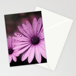 DEW DROPS ON DAISIES Stationery Cards