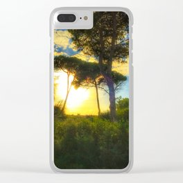 Rota Spain trees 2 Clear iPhone Case