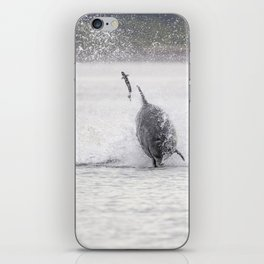 Dolphin and salmon iPhone Skin