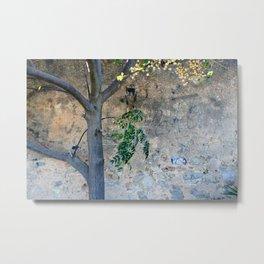 Painted gunge wall and tree Metal Print