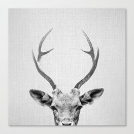 Deer - Black & White Canvas Print