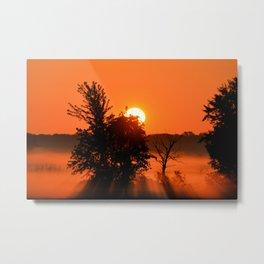 Rays Of Morning Metal Print