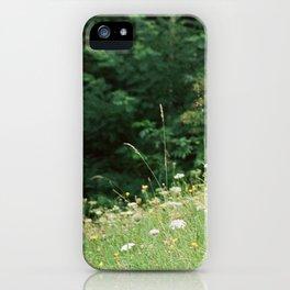 Wildflowers 2 iPhone Case