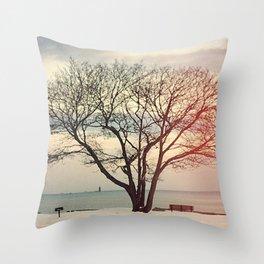 Snow #2 Throw Pillow