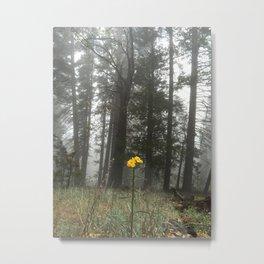 """""""In a fog"""" Metal Print"""