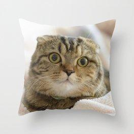 little sis Tsukune Throw Pillow