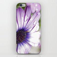 Purple Bliss iPhone & iPod Skin