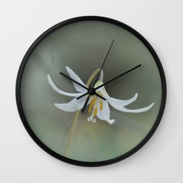 White Trout Lily in the Forest Wall Clock