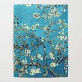 almond blossom van gogh Poster
