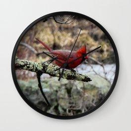 Carefree Cardinal Wall Clock