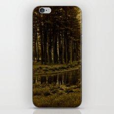 yogi iPhone & iPod Skin