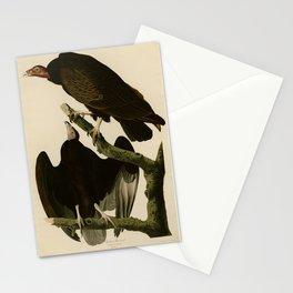Turkey Buzzard Stationery Cards