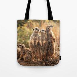 Meerkat Family Photography Tote Bag