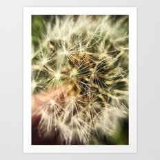 Dandelion Bliss Art Print